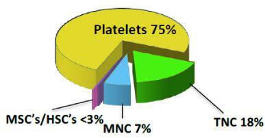 Case Study: Adding Venetoclax to Azacitidine for Patients